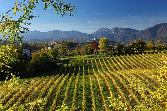 img-2935-ogliano-panoramica-autunnale-2-ottobre-2010-mr